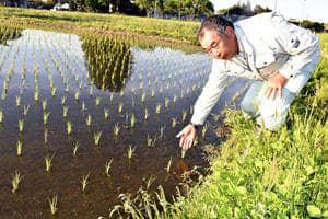 被災農地の田植え「間に合った」 東日本台風の復旧、県内9割超