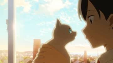 「泣きたい私は猫をかぶる」エンドソングがヨルシカの新曲に決定 切なさ満点の新PV公開