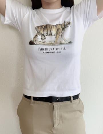 """え、全然ありじゃない??ユニクロの""""キッズTシャツ""""を立派な大人が着てみた話"""