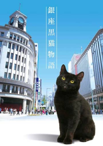 世界展開決定!「銀座黒猫物語」に吉沢悠、秋元才加、矢作穂香、竹財輝之助、矢野浩二らが集結。黒猫の声は山寺宏一