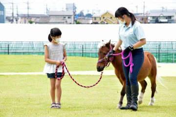 こもりがちだった子どもに、馬と触れ合う機会を ポニーのイチローくんと青空散歩 筑西・道の駅