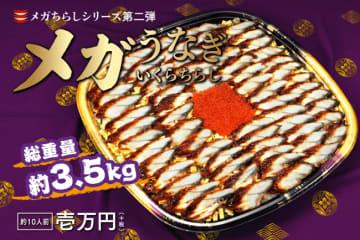 総量約3.5キロのうなぎの蒲焼 メガサイズのちらし寿司に