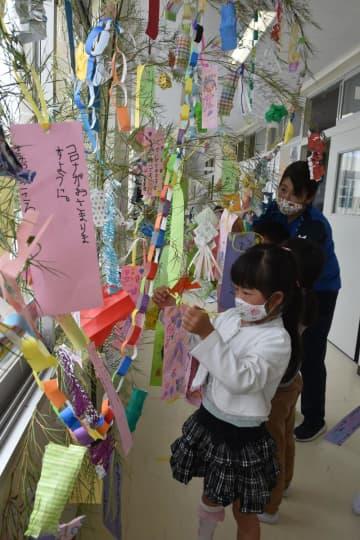短冊に「コロナが収まりますように」 いすみ市の小学校で七夕の飾り付け