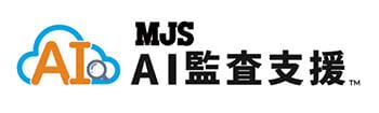 AI活用の仕訳・残高チェックシステム「MJS AI 監査支援」、7月13日に提供開始 画像