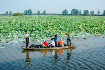 中国人消費者の8割以上、下半期の旅行に意欲的 画像