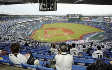 スタジアムに歓声戻る プロ野球とJリーグ 画像