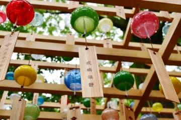 コロナ禍鎮静の祈りを風に乗せ…川越氷川神社が江戸風鈴320個を設置、境内に涼やかな音色響き