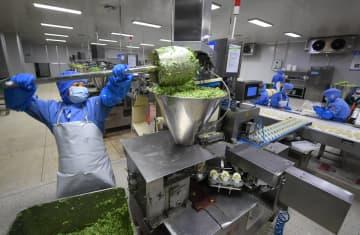 一定規模以上食品工業企業、1~5月利益総額は2102億元超 工信部