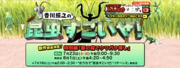 「昆虫すごいぜ!」VS「潜れ!さかなクン」 NHK裏番組対決に「自然好き」が揺れた