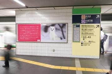 「好きな動物はオコジョです」。表参道の駅に突如現れた話題の看板広告。その意図がめちゃくちゃ深か...