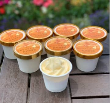 道の駅とみうら枇杷倶楽部「びわソフトクリームアイス」を「おうちで 道の駅!」で販売開始