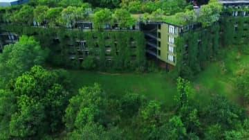 超絶景!まるで森に覆われた美しいリゾートホテル