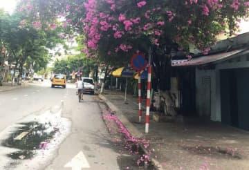 7月下旬に中部ダナン市で市中感染が報告されて以来、同市の街中は閑散としている=8月1日