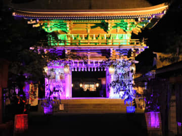 伊佐須美の杜 七夕祈願祭 18日までライトアップ 美里