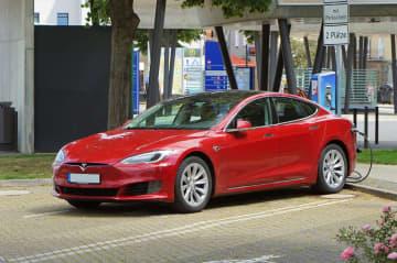 Tesla Bear's Case; Full Self-Driving Rewrite Beta