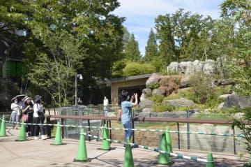 上野動物園「パンダのもり」公開