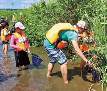 大人も「ガサガサ」 平間小保護者、多摩川で
