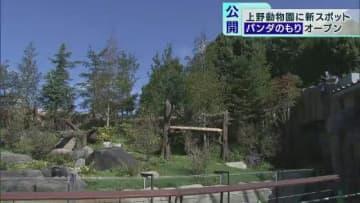 上野動物園 新施設「パンダのもり」一般公開始まる