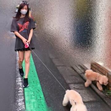 板野友美、愛犬との散歩写真アップも猛ツッコミ「誰が撮ってるの?」