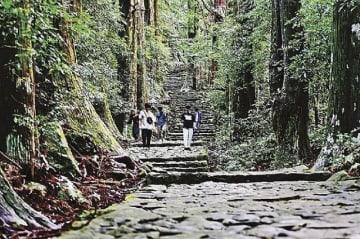熊野古道の大門坂が3位 旅行雑誌の「涼感じる絶景」