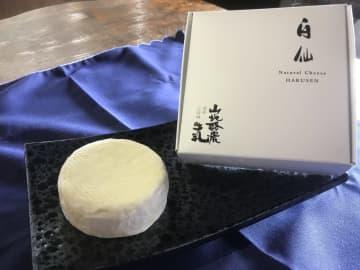 岩手県の田野畑山地酪農牛乳株式会社 希少な山地酪農牛乳からつくるブランドチーズ「白仙」のクラウドファ... 画像