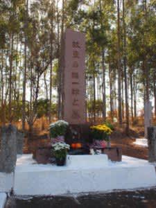 アルヴァレス・マシャード日本人墓地にある星名の墓