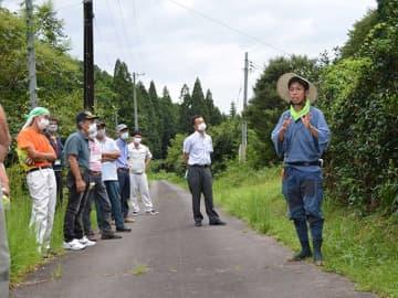 長年放置された茶樹(右側)を前に手入れの仕方を話す伊川健一さん=加茂郡七宗町神渕