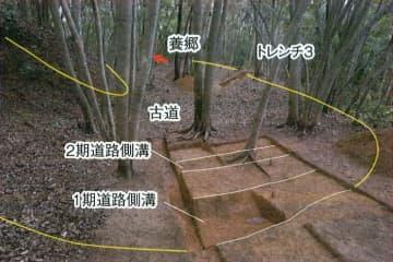 つづら折りになった古代山陰道とみられる道路跡=鳥取市(鳥取県埋蔵文化財センター提供)