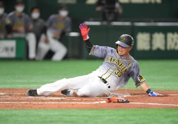 阪神・糸原 千金走!サンズ中前打で一塁からイッキ生還 丸のスキつく好判断