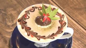 円山最新スポット紹介!新感覚の限定パフェが味わえるカフェも♡