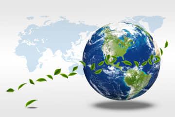 Experts hail East Asian carbon-neutrality pledges