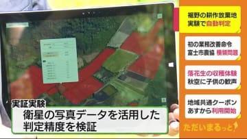 耕作放棄地を自動判定 実証実験が始まる 衛星の写真データを活用 静岡・裾野市