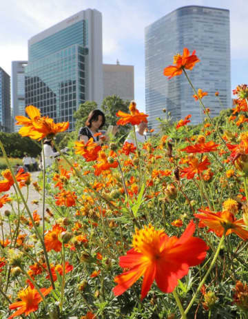 「都民の日」無料開放される施設一覧。大人気の上野動物園や葛西臨海水族園は入れる?