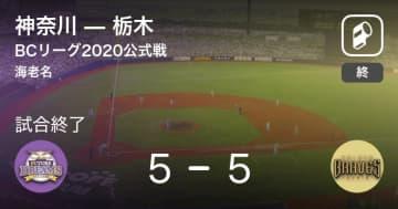 【BCリーグ公式戦】神奈川が栃木と引き分ける