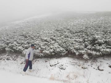 初雪が観測された乗鞍岳=17日午前、岐阜県高山市