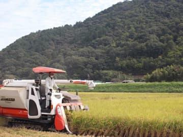 アグリファーム上城の農地。ハツシモの収穫は10月中旬がピークで、コンバイン2台を使い1日3㌶刈るという=岐阜市方県