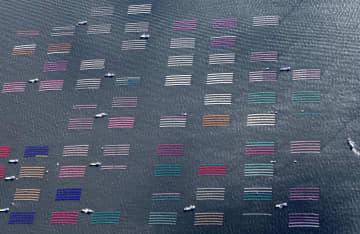 有明海で養殖ノリの種付け作業が始まり、海面に広がったカラフルなノリ網=18日午前、佐賀市沖(共同通信社ヘリから)