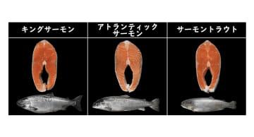 """特徴が分かる""""鮭の一覧表""""が参考になると話題…焼き鮭にオススメはどれ? 担当者に聞いた 画像"""