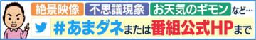 """日本一高~い!""""窓拭きサンタ""""が活躍中…会える日のポイントは「小春日和」? 画像"""