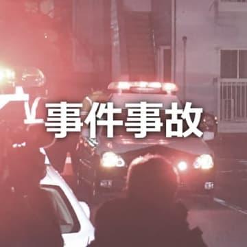 ブドウ150房窃盗疑いで大泉のベトナム男再逮捕