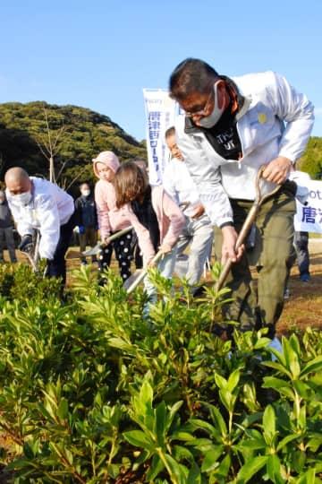 ツツジを植樹する唐津西ロータリークラブのメンバーら=唐津市の衣干山さくら公園
