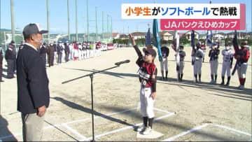 小学生ソフトボールチームが熱戦!「JAバンクえひめカップ」【松山市】