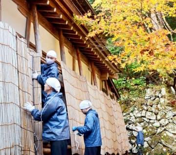 雪囲いの作業に取り組む雲水たち=11月21日、福井県永平寺町の大本山永平寺