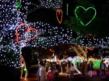 色とりどりの電飾が街を変身させるひろしまドリミネーション=広島市中区の平和大通り(撮影・田中慎二)