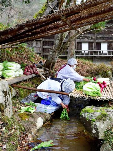 昔ながらの飛騨の風情あふれる冬支度を披露した小川での菜洗い=高山市上岡本町、飛騨の里