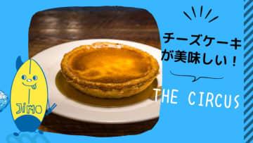 【茅ヶ崎】THE CIRCUS(サーカス)のチーズケーキ食べてきた!インスタ映えする季節のタルトもあるよ!