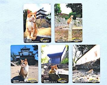 猫城主のカードもらおう 高梁の観光施設 共通券使用で配布