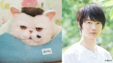 「おじさまと猫」猫の声は神木隆之介!「ノンフィクションさを出せたら」