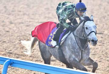 【JRA】香港国際競走出走の日本馬発表 香港C連覇目指すウインブライトなど6頭