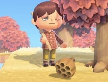 木を揺らして巣が落ちてくるって現実にあり得る?『あつまれ どうぶつの森』の「ハチ」について【平坂寛の『あつ森』博物誌】